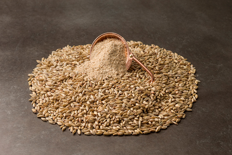 Malt grain both whole and milled